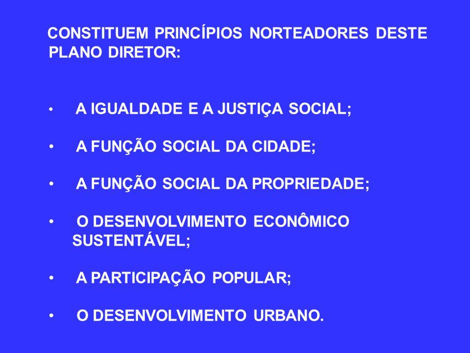 A FUNÇÃO SOCIAL DA CIDADE; A FUNÇÃO SOCIAL DA PROPRIEDADE;
