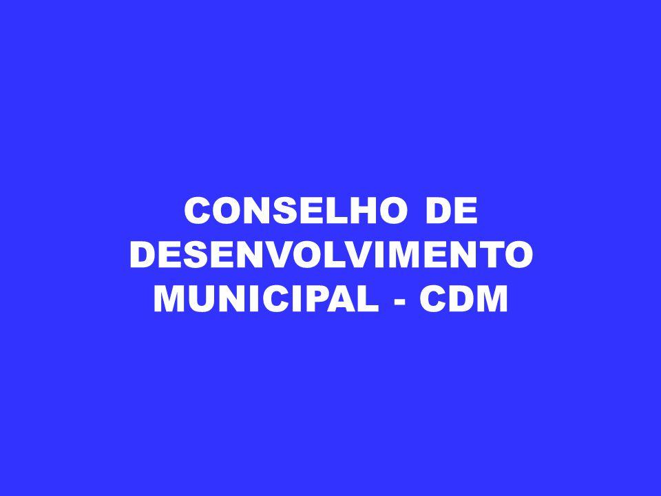 CONSELHO DE DESENVOLVIMENTO MUNICIPAL - CDM
