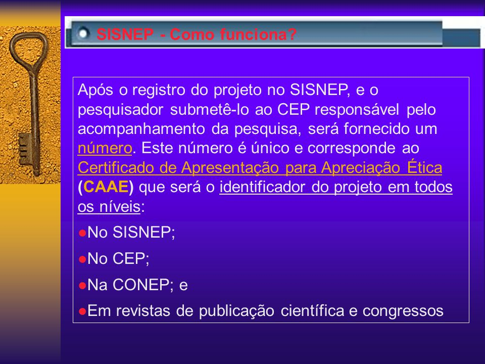 SISNEP - Como funciona