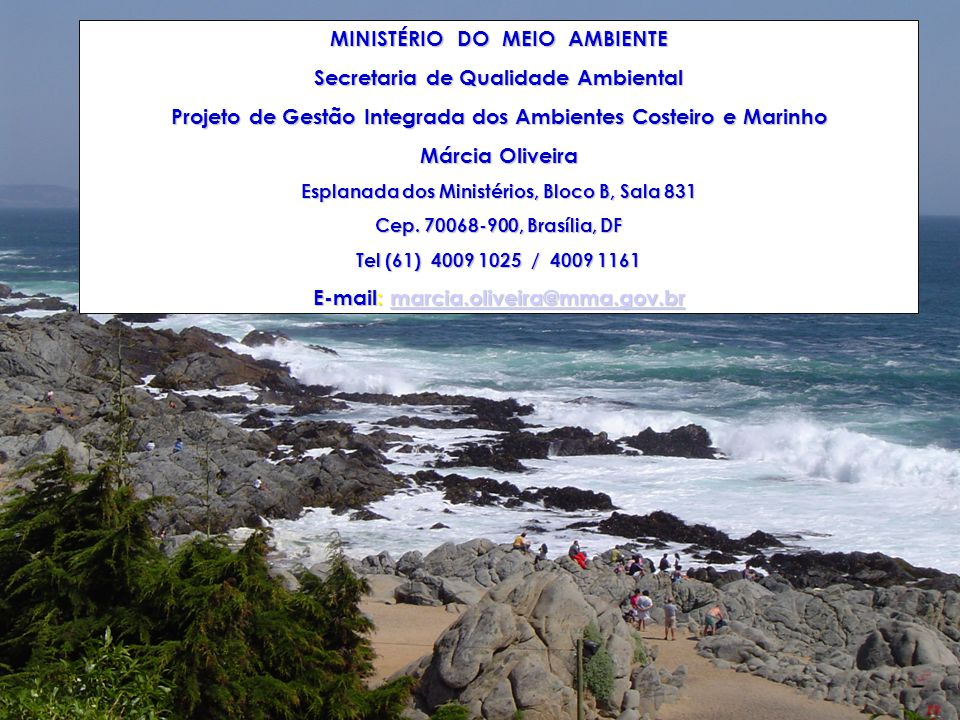MINISTÉRIO DO MEIO AMBIENTE Secretaria de Qualidade Ambiental
