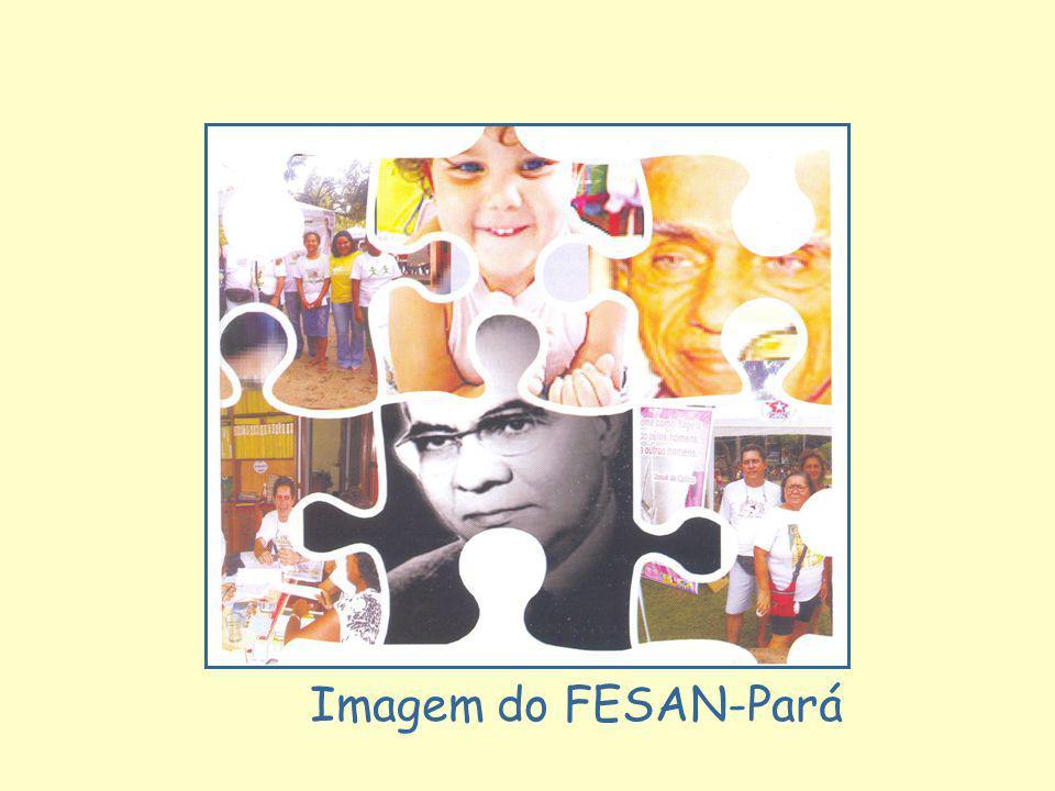 Imagem do FESAN-Pará