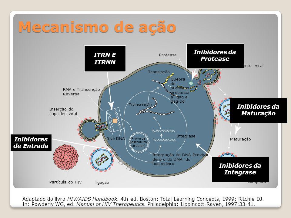 Inibidores da Protease Inibidores da Maturação Inibidores da Integrase