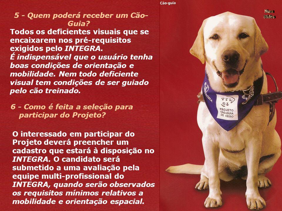 5 - Quem poderá receber um Cão-Guia 6 - Como é feita a seleção para