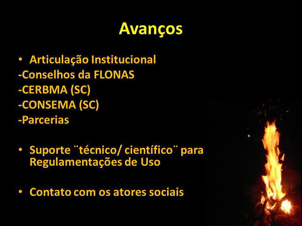 Avanços Articulação Institucional -Conselhos da FLONAS -CERBMA (SC)