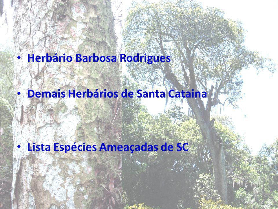 Herbário Barbosa Rodrigues