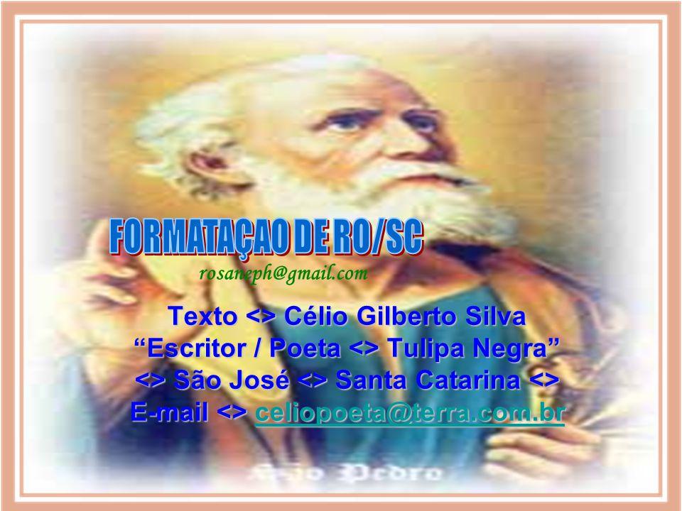 FORMATAÇAO DE RO/SC rosaneph@gmail.com
