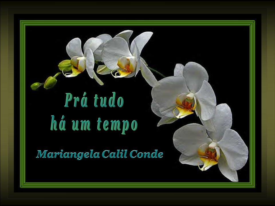 Mariangela Calil Conde