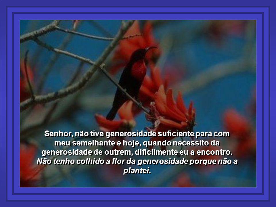 Senhor, não tive generosidade suficiente para com meu semelhante e hoje, quando necessito da generosidade de outrem, dificilmente eu a encontro.