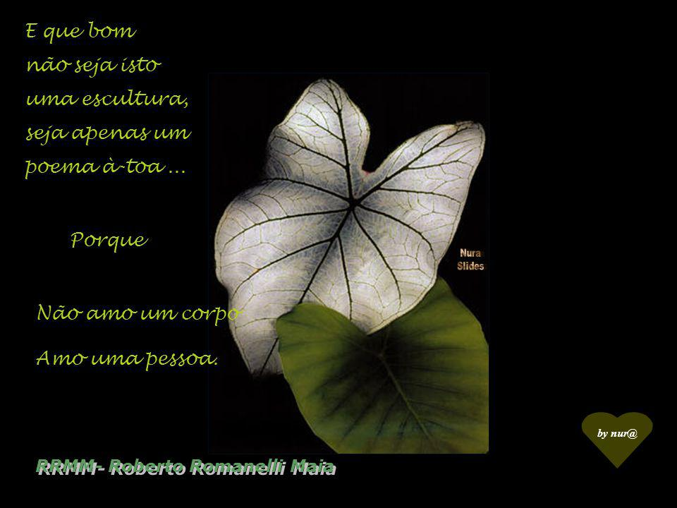 RRMM- Roberto Romanelli Maia