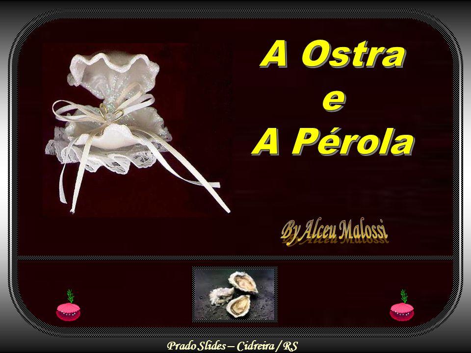 A Ostra e A Pérola By Alceu Malossi
