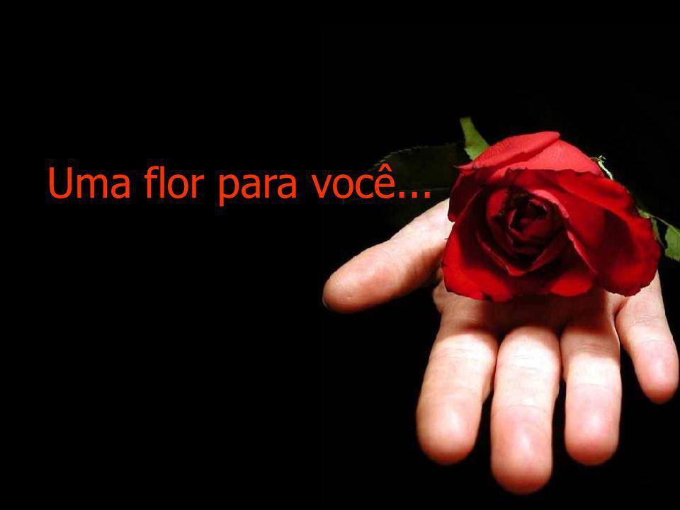 Uma flor para você...