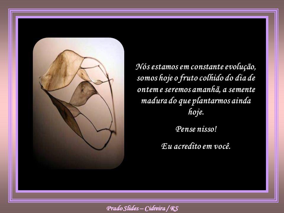 Nós estamos em constante evolução, somos hoje o fruto colhido do dia de ontem e seremos amanhã, a semente madura do que plantarmos ainda hoje.