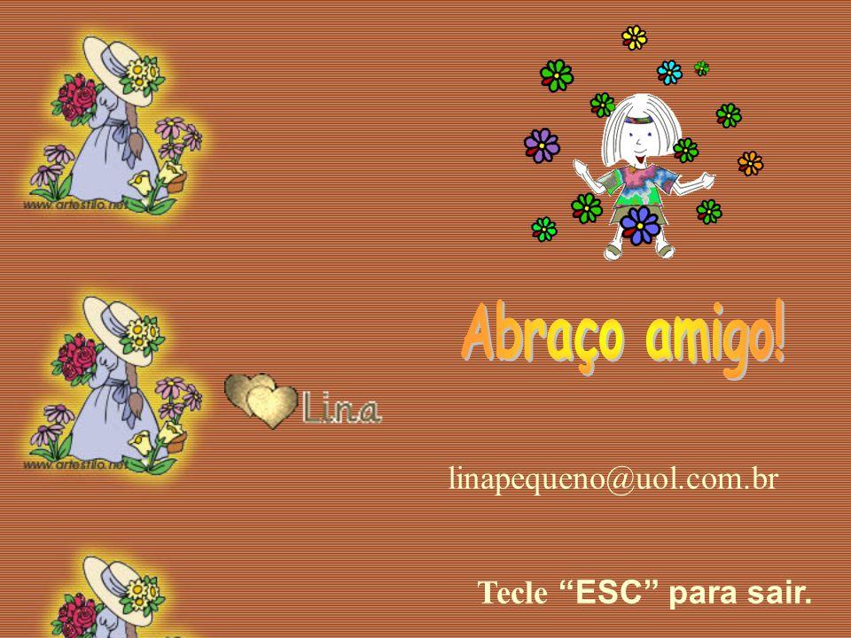 Abraço amigo! linapequeno@uol.com.br Tecle ESC para sair.