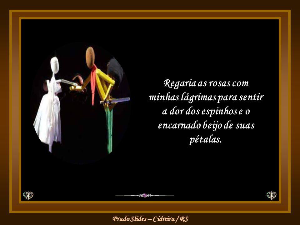 Regaria as rosas com minhas lágrimas para sentir a dor dos espinhos e o encarnado beijo de suas pétalas.