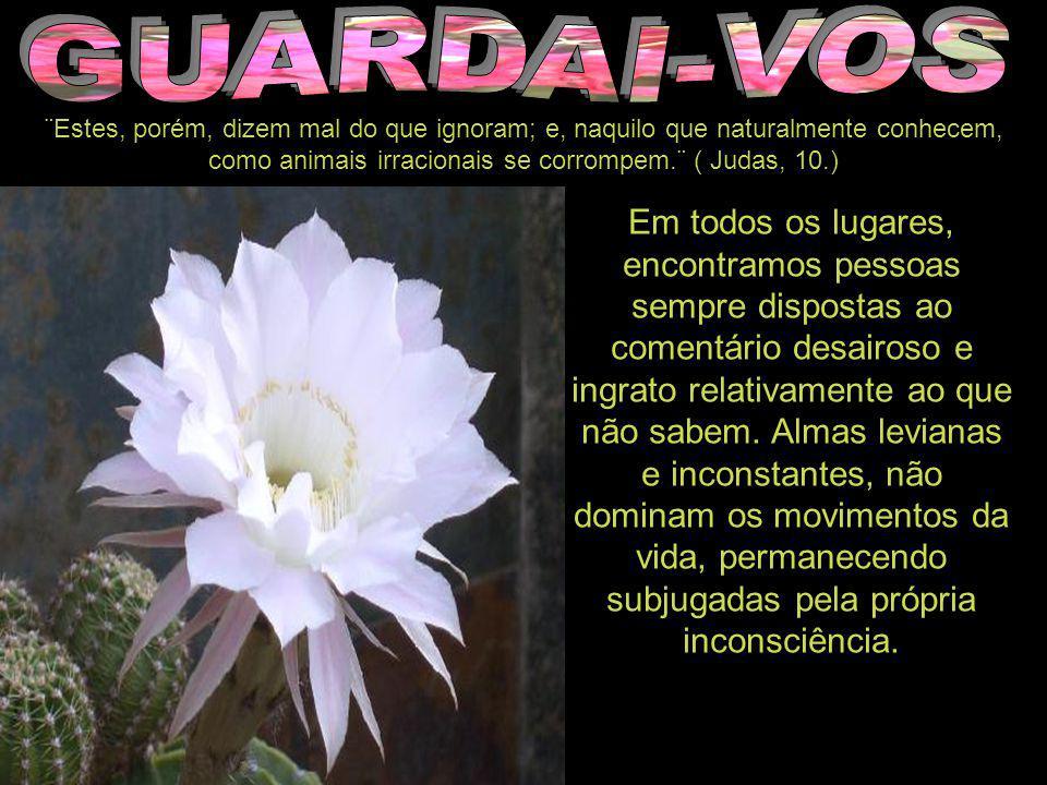 GUARDAI-VOS ¨Estes, porém, dizem mal do que ignoram; e, naquilo que naturalmente conhecem, como animais irracionais se corrompem.¨ ( Judas, 10.)