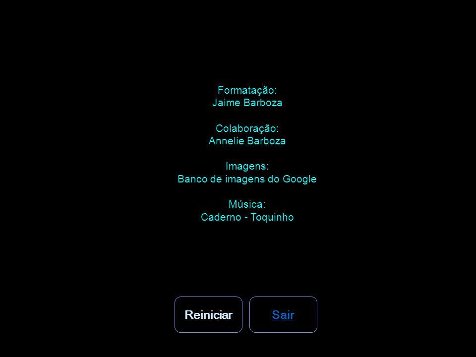Banco de imagens do Google