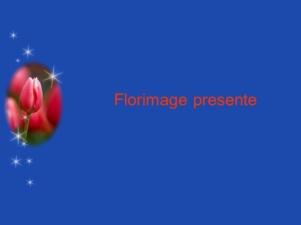 Florimage presente