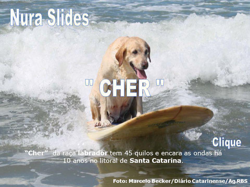 Nura Slides CHER Clique