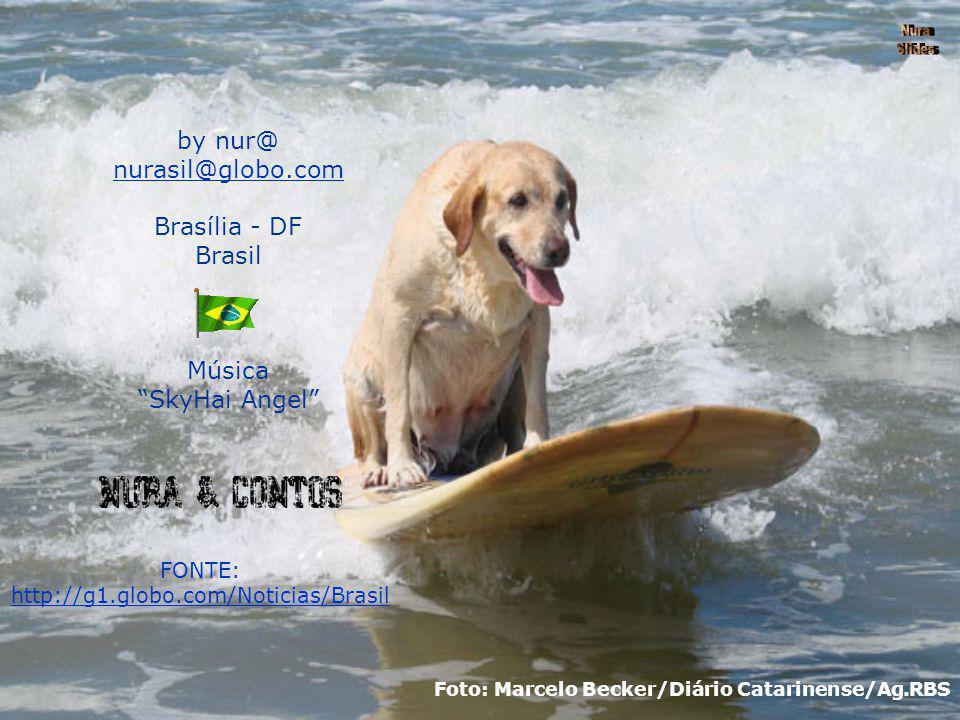 by nur@ nurasil@globo.com Brasília - DF Brasil Música SkyHai Angel