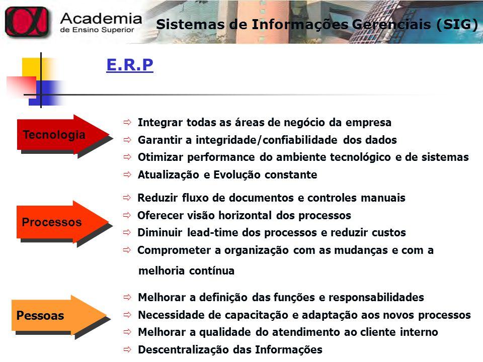 E.R.P Sistemas de Informações Gerenciais (SIG) Tecnologia Processos