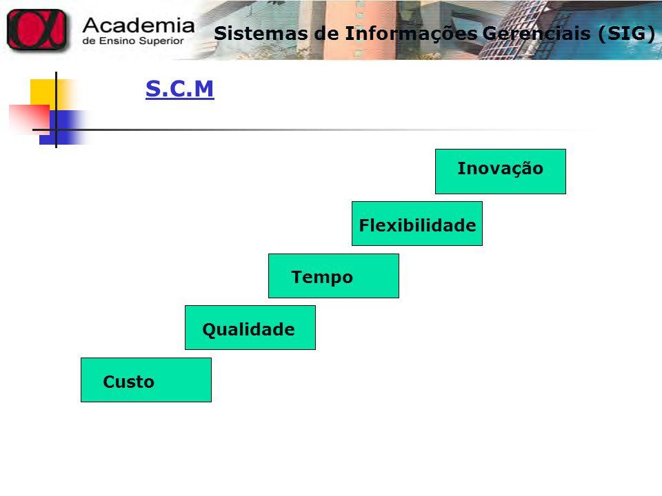 S.C.M Sistemas de Informações Gerenciais (SIG) Inovação Flexibilidade