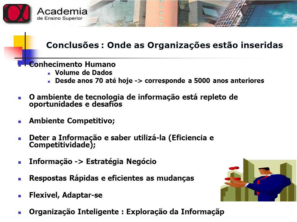 Conclusões : Onde as Organizações estão inseridas