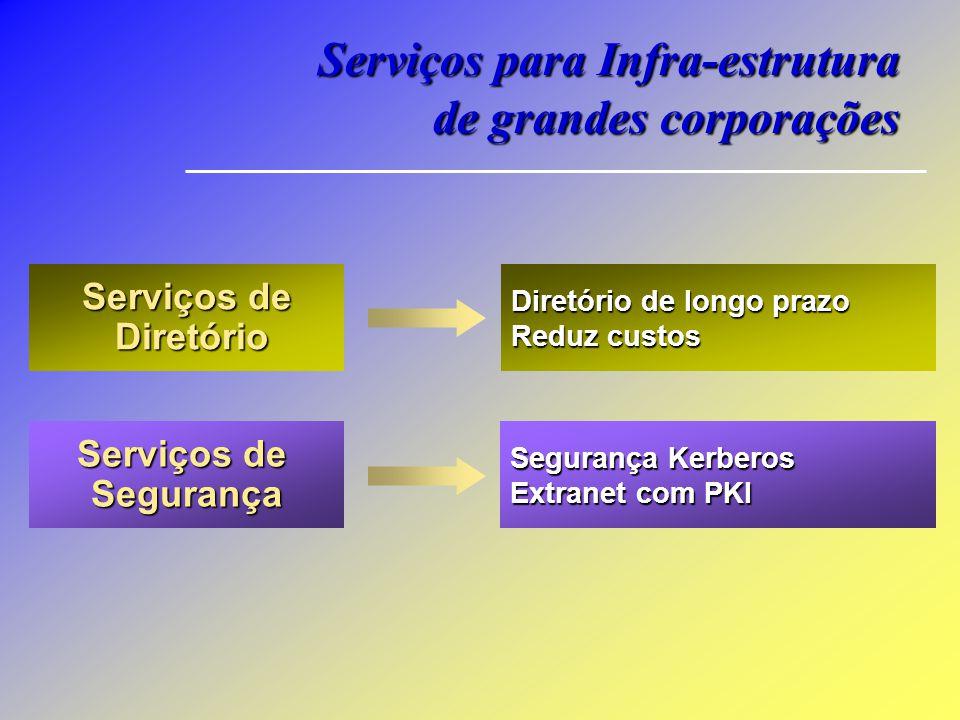 Serviços para Infra-estrutura de grandes corporações