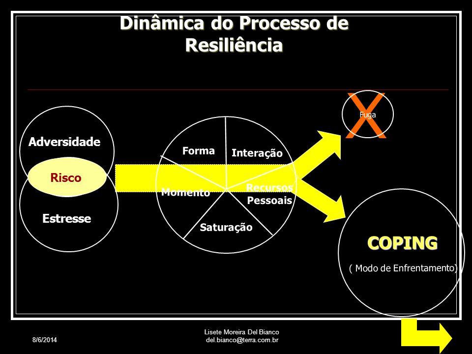 Dinâmica do Processo de Resiliência