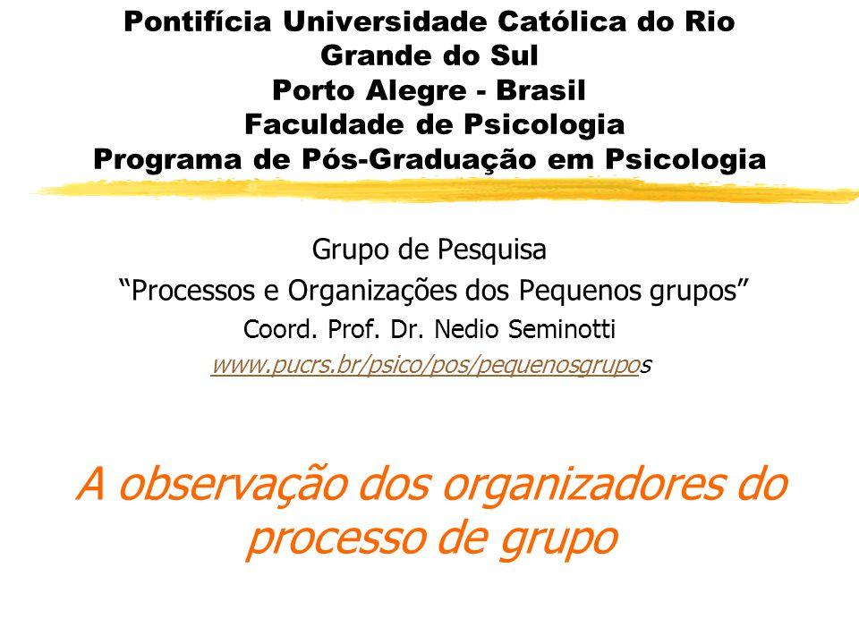 A observação dos organizadores do processo de grupo