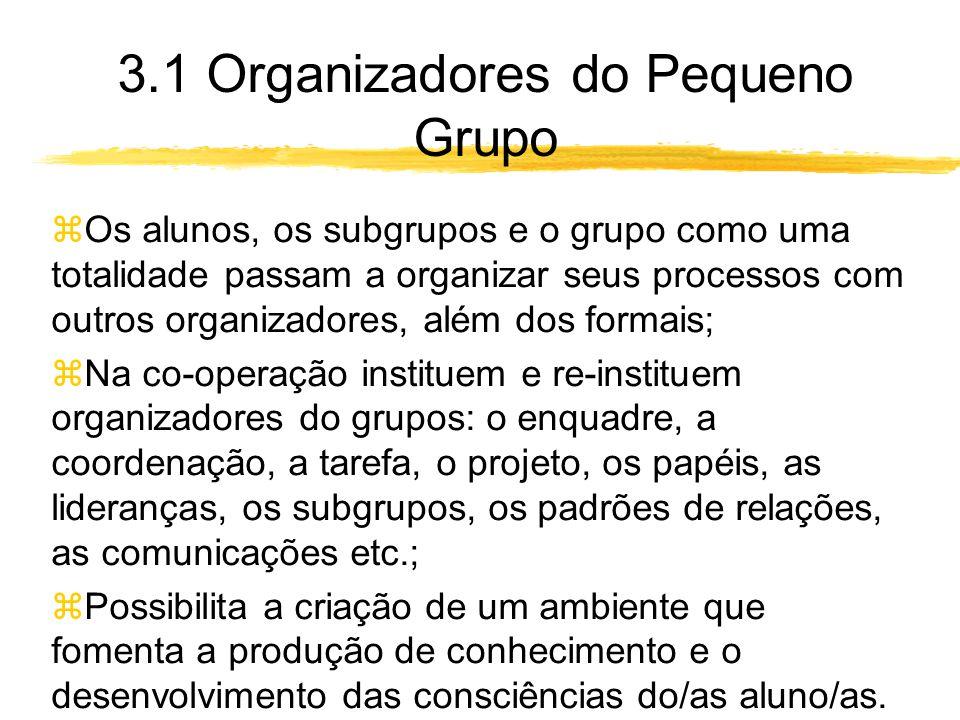 3.1 Organizadores do Pequeno Grupo