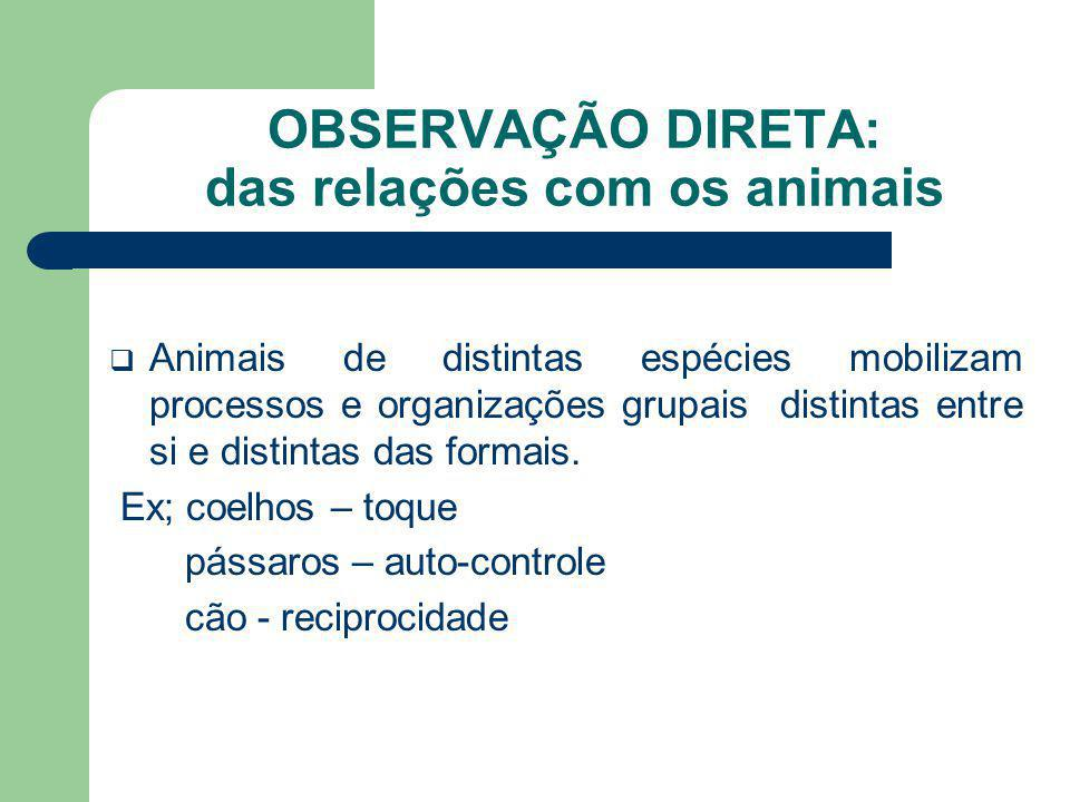 OBSERVAÇÃO DIRETA: das relações com os animais