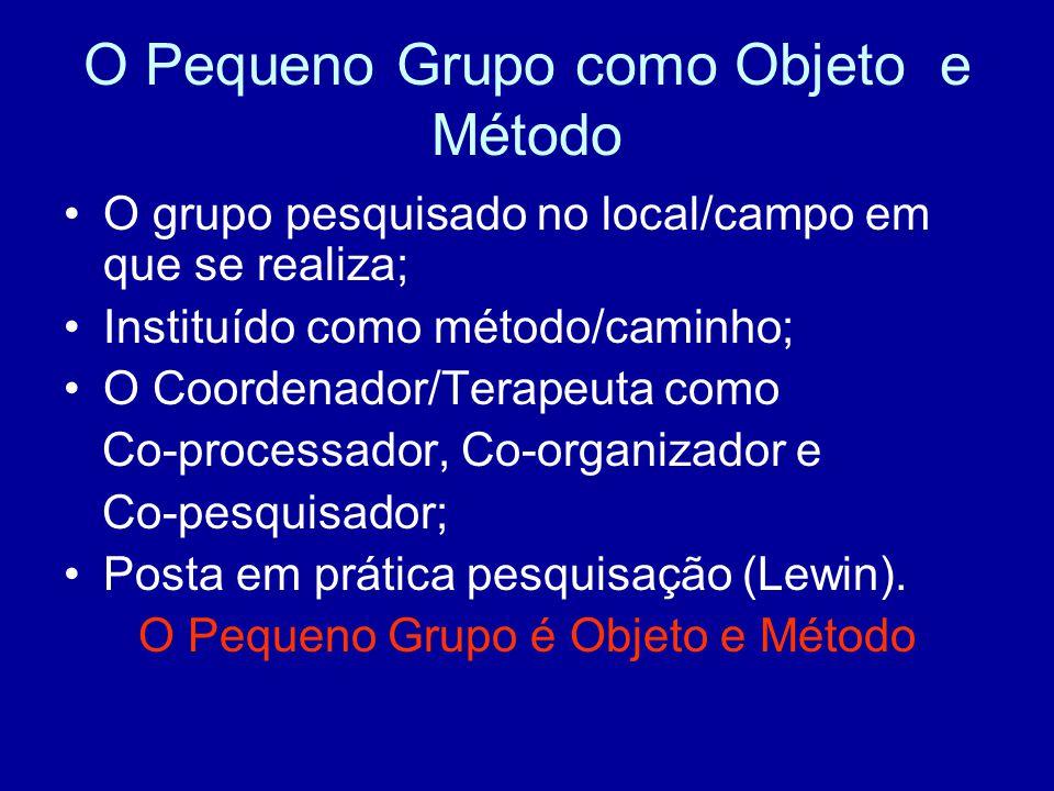 O Pequeno Grupo como Objeto e Método