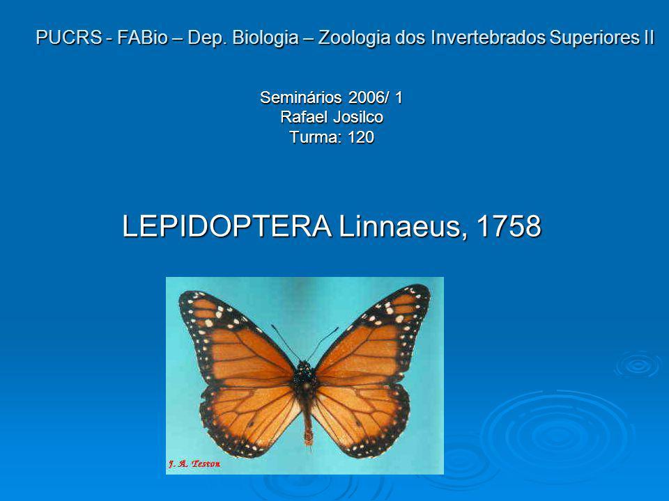 PUCRS - FABio – Dep. Biologia – Zoologia dos Invertebrados Superiores II