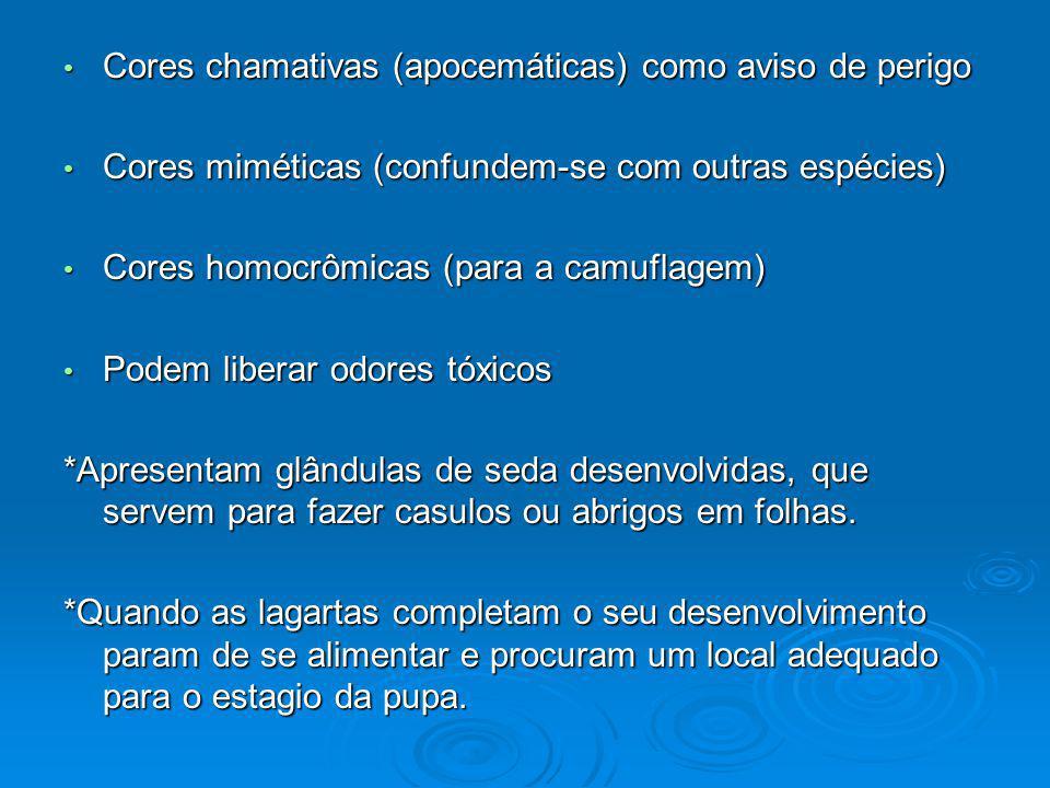 Cores chamativas (apocemáticas) como aviso de perigo