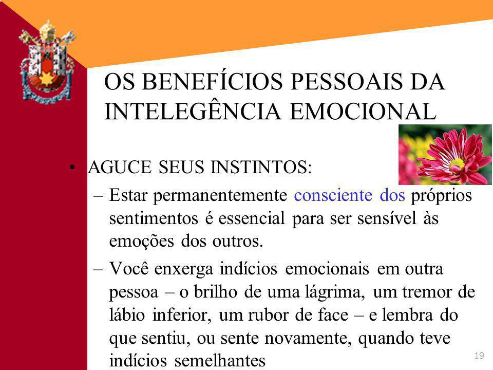 OS BENEFÍCIOS PESSOAIS DA INTELEGÊNCIA EMOCIONAL