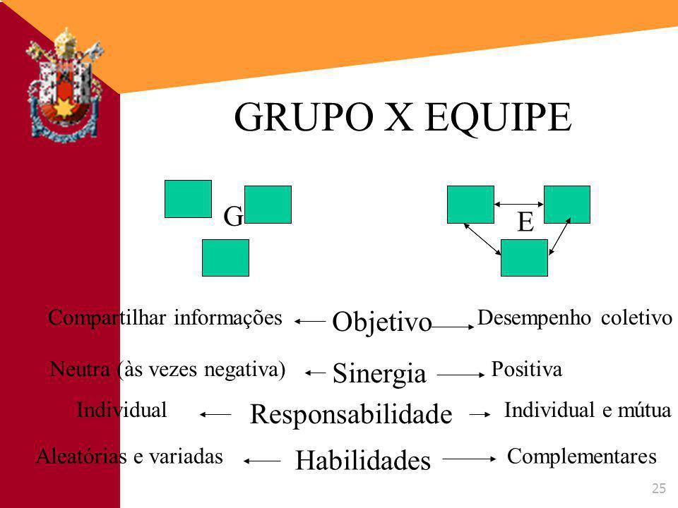 GRUPO X EQUIPE G E Objetivo Sinergia Responsabilidade Habilidades