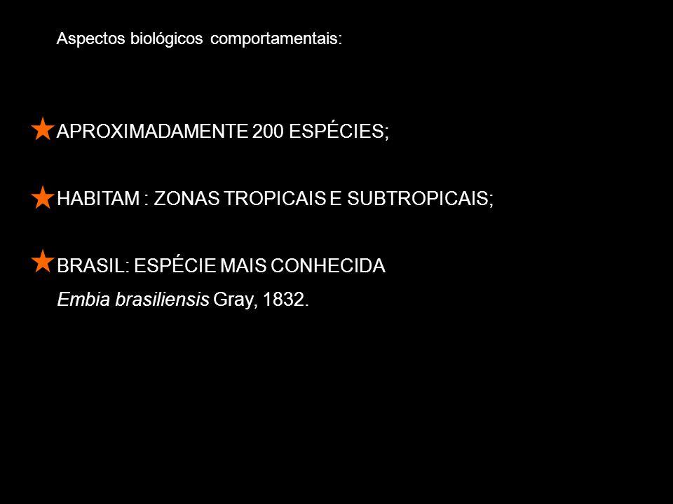 APROXIMADAMENTE 200 ESPÉCIES;