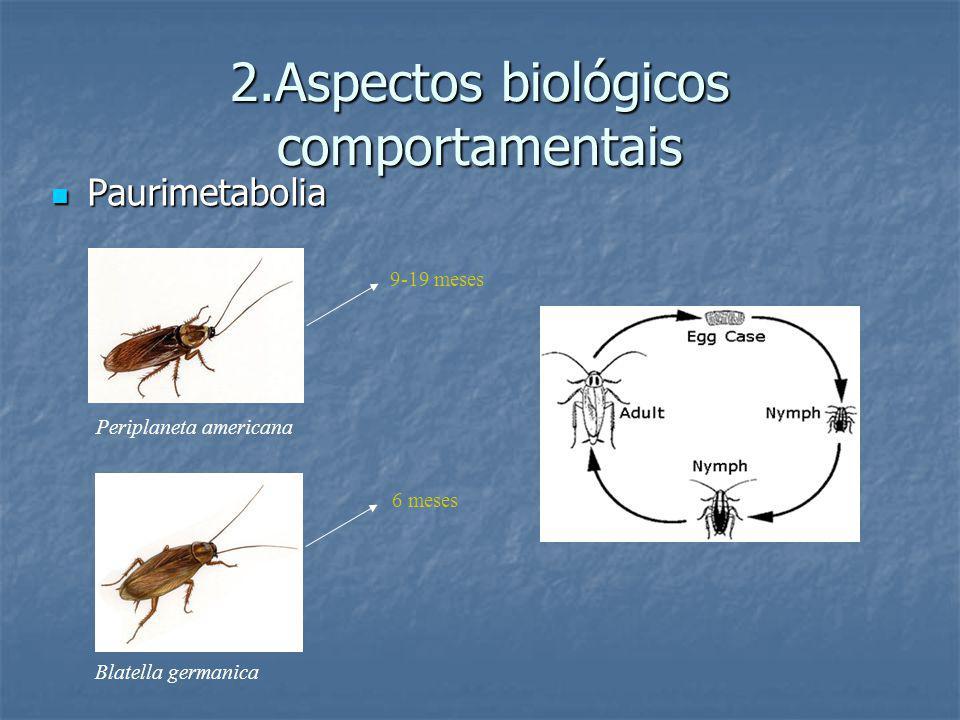 2.Aspectos biológicos comportamentais