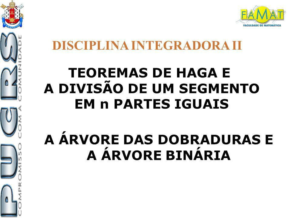 A DIVISÃO DE UM SEGMENTO A ÁRVORE DAS DOBRADURAS E
