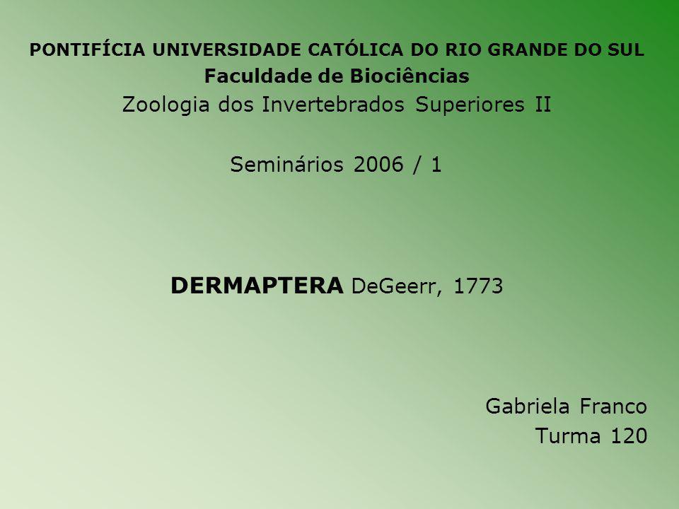 DERMAPTERA DeGeerr, 1773 Zoologia dos Invertebrados Superiores II