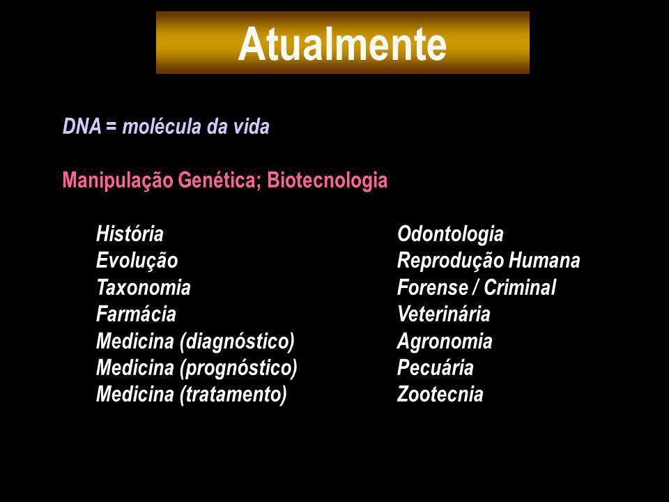 Atualmente DNA = molécula da vida Manipulação Genética; Biotecnologia
