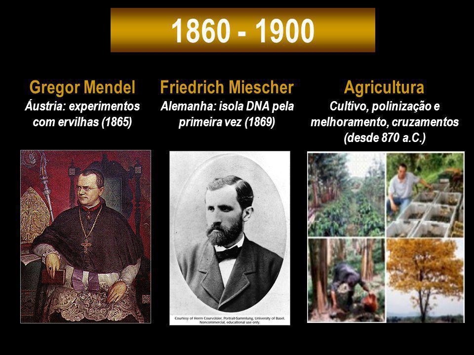 1860 - 1900 Gregor Mendel Friedrich Miescher Agricultura