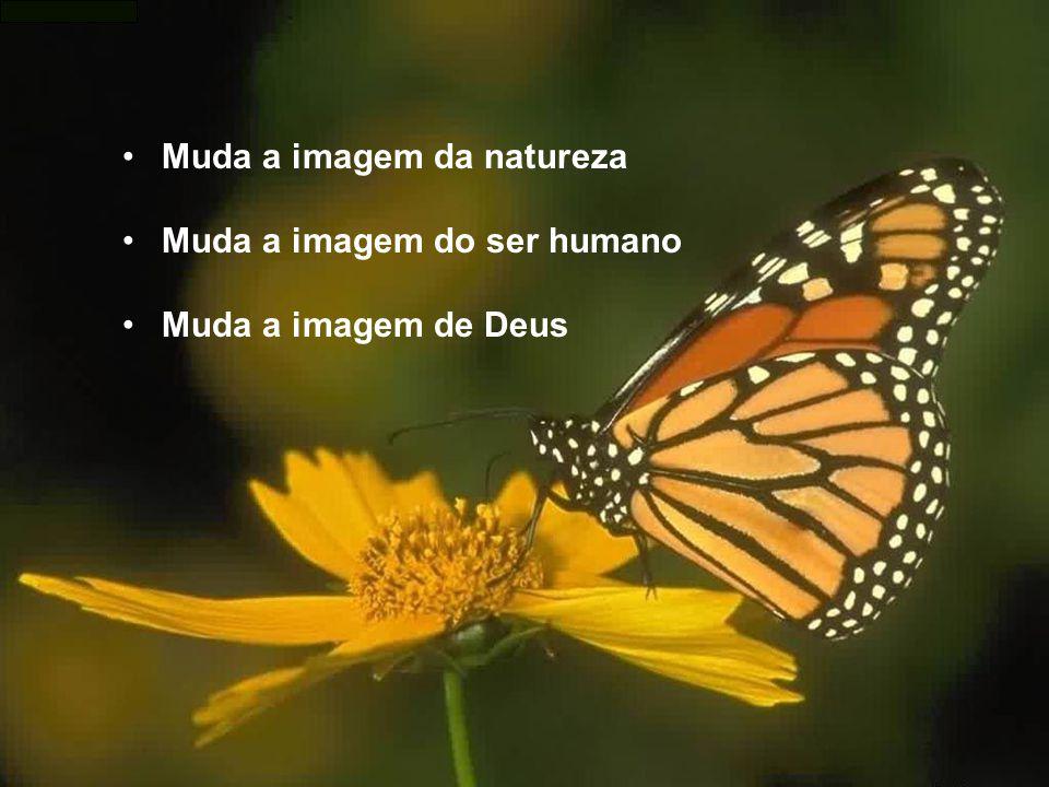 Muda a imagem da natureza