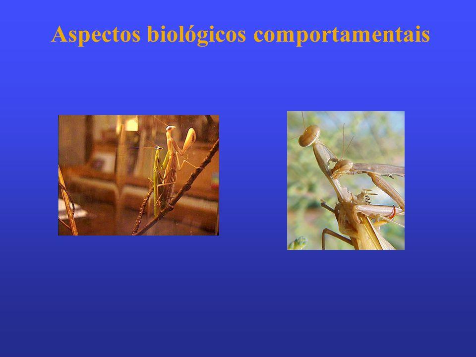 Aspectos biológicos comportamentais