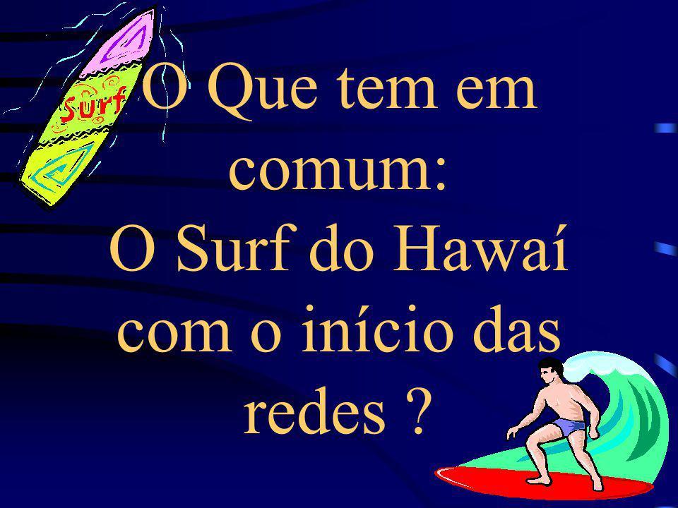 O Que tem em comum: O Surf do Hawaí com o início das redes