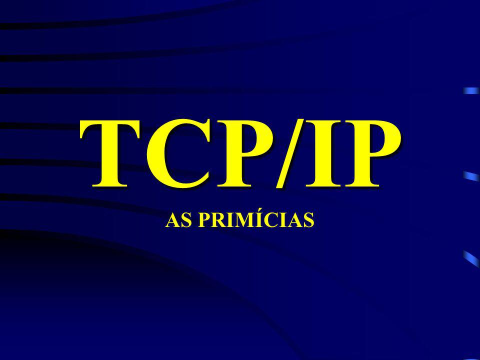 TCP/IP AS PRIMÍCIAS