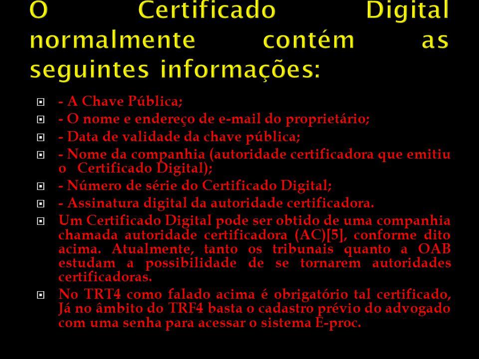 O Certificado Digital normalmente contém as seguintes informações:
