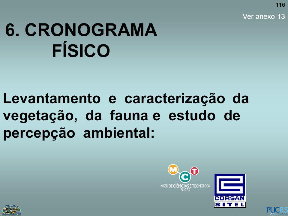 6. CRONOGRAMA FÍSICO Ver anexo 13.