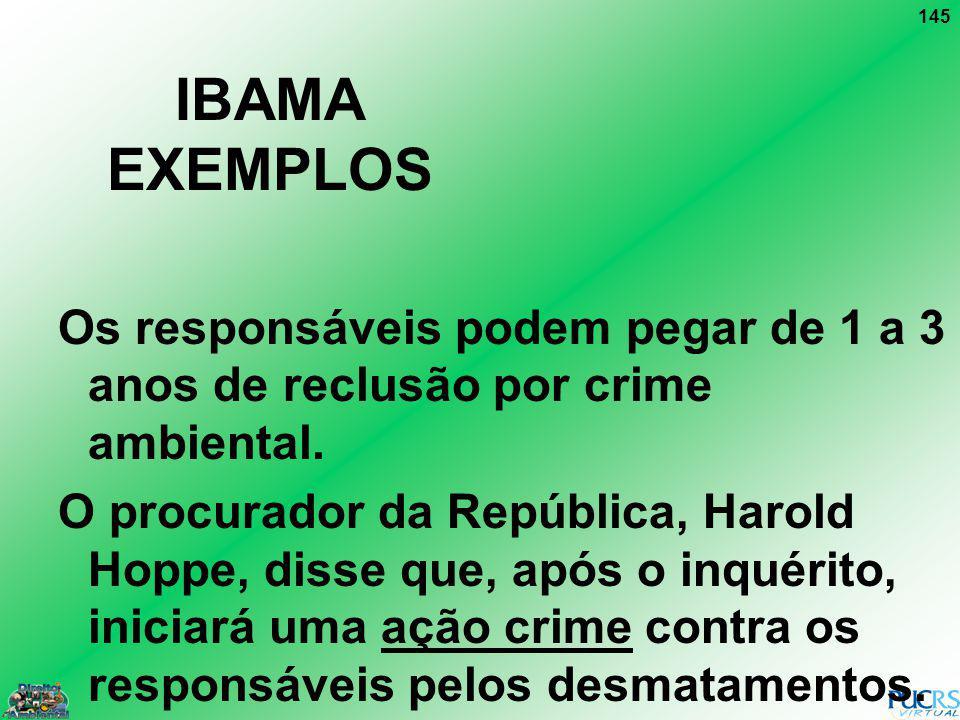 IBAMA EXEMPLOS Os responsáveis podem pegar de 1 a 3 anos de reclusão por crime ambiental.