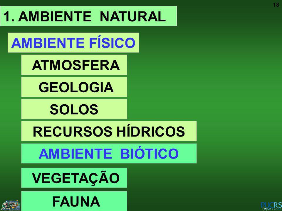 1. AMBIENTE NATURAL AMBIENTE FÍSICO. ATMOSFERA. GEOLOGIA. SOLOS. RECURSOS HÍDRICOS. AMBIENTE BIÓTICO.